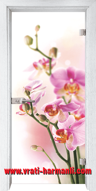 Стъклена интериорна врата модел Print G 13-2 с каса Бреза
